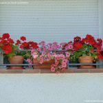 Foto Casa decorada con geranios en Guadalix 7