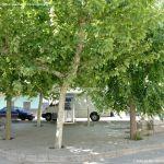 Foto Plaza de los Olmos 5