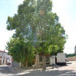 Foto Plaza de los Olmos 10
