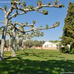 Foto Parque de la Bola 19