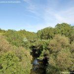 Foto Entorno del Puente Romano 15