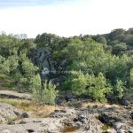 Foto Entorno del Puente Romano 23