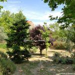 Foto Parque de Asturias 13