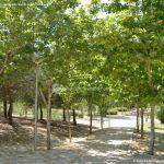 Foto Parque de Asturias 17