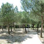 Foto Parque de Asturias 31