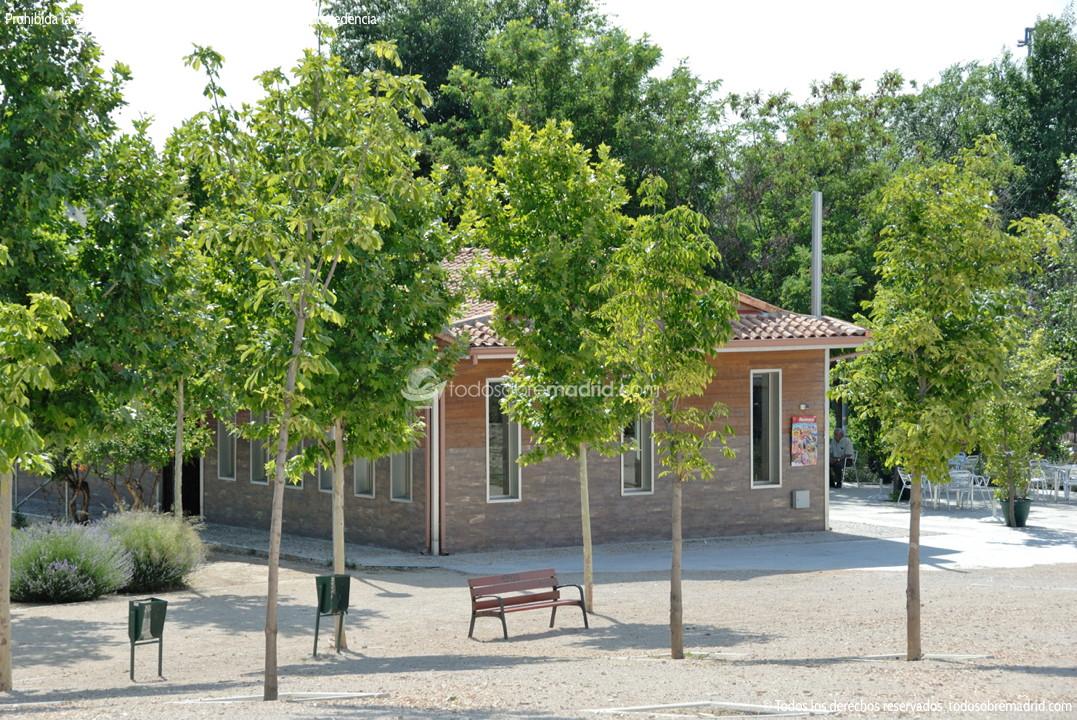 Piscinas casco antiguo de rivas rivas vaciamadrid - Piscina rivas vaciamadrid ...