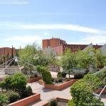Foto Parque junto a Biblioteca José Saramago 10