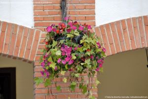 Foto Ayuntamiento de Pinto 10
