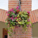Foto Ayuntamiento de Pinto 12
