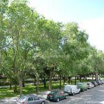 Foto Parque del Egido 10