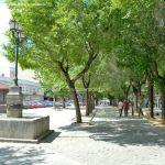 Foto Parque del Egido 20