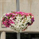 Foto Plaza del Ayuntamiento de Tres Cantos 14