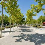 Foto Avenida de los Encuartes 31