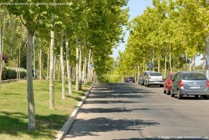 Foto Avenida de la Vega 4