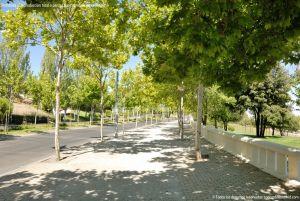 Foto Avenida de la Vega 12