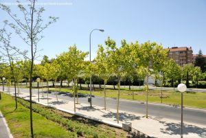 Foto Avenida de la Vega 14