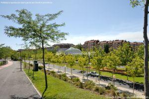 Foto Avenida de la Vega 16