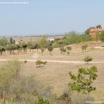Foto Parque Central de Tres Cantos 4