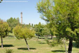 Foto Parque Central de Tres Cantos 16