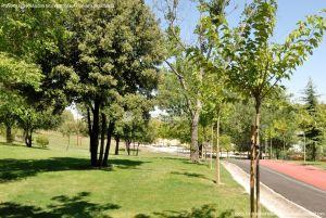 Foto Parque Central de Tres Cantos 18