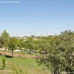 Foto Parque Central de Tres Cantos 31