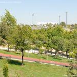Foto Parque Central de Tres Cantos 32