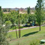 Foto Parque Central de Tres Cantos 33