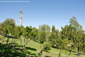 Foto Parque Central de Tres Cantos 35
