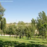 Foto Parque Central de Tres Cantos 40