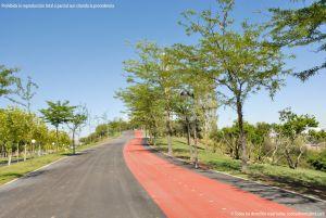 Foto Parque Central de Tres Cantos 41
