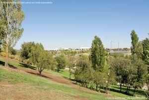 Foto Parque Central de Tres Cantos 43