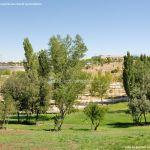 Foto Parque Central de Tres Cantos 44