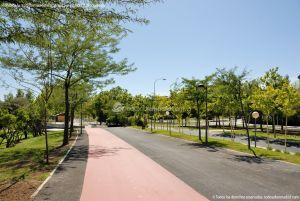 Foto Parque Central de Tres Cantos 47