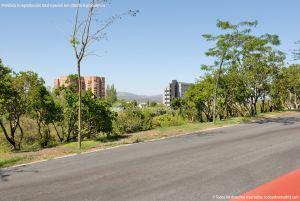 Foto Parque Central de Tres Cantos 52