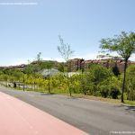 Foto Parque Central de Tres Cantos 53