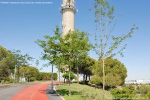 Foto Parque Central de Tres Cantos 54