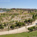 Foto Parque Central de Tres Cantos 58