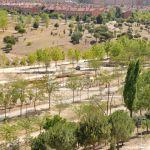 Foto Parque Central de Tres Cantos 59