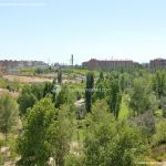 Foto Parque Central de Tres Cantos 60