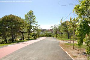 Foto Parque Central de Tres Cantos 65