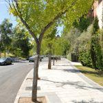 Foto Calle de la Iglesia de Tres Cantos 3
