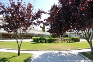Foto Parque de la Iglesia de Tres Cantos 5