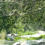 Foto Área Recreativa del Puente Mocha 35