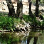Foto Área Recreativa del Puente Mocha 38