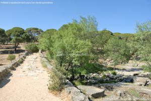 Foto Área Recreativa del Puente Mocha 48