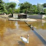 Foto Lago en Parque El Castillo 14