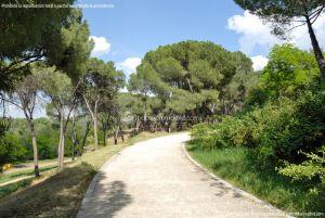 Foto Jardín Histórico de Villaviciosa de Odón 8