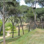 Foto Jardín Histórico de Villaviciosa de Odón 10