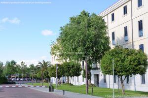 Foto Reales Guardias Walonas y Edificio Sabatini 16