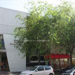 Foto Biblioteca Municipal Gloria Fuertes 5